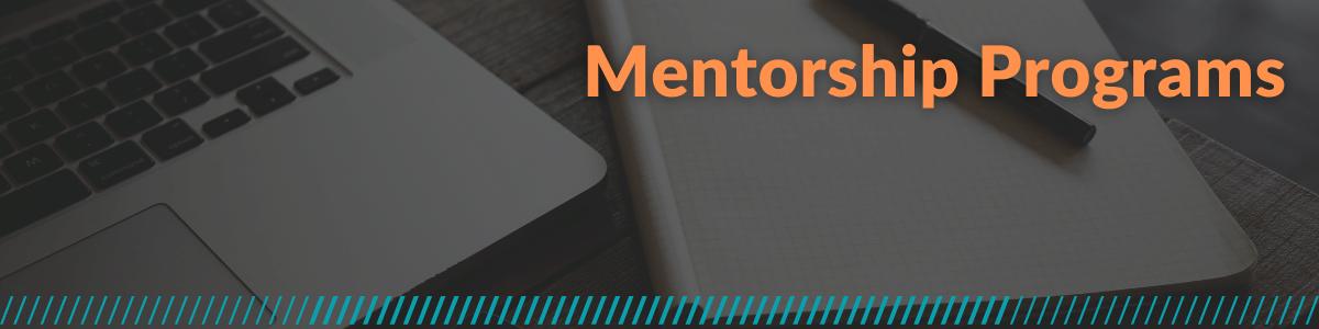 Mentorship Programs
